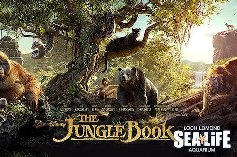 The Jungle Book at Loch Lomond Shores