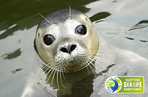Scottish Sea Life Sanctuary tickets - itison
