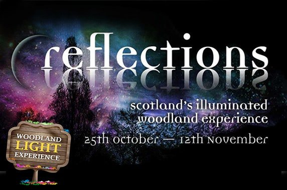 Woodland Light Experience 2017, Balfron Station