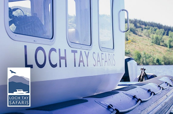 Loch Tay Safaris cruise