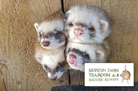 Murton Farm family passes - valid until 2021!