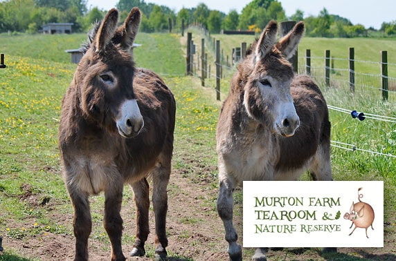 Murton Farm family or annual pass