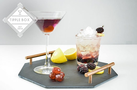 Tipple Box – craft cocktail box subscription