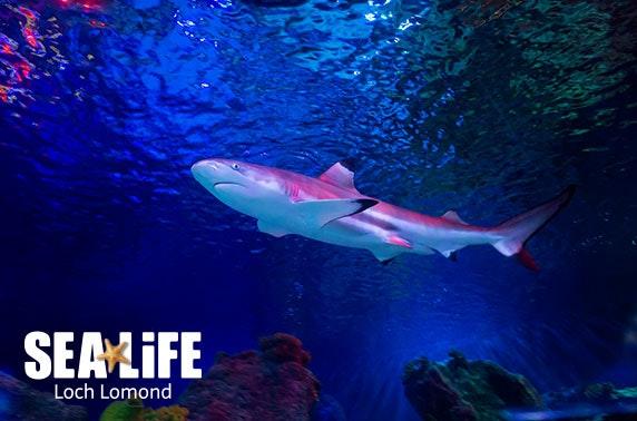 SEA LIFE Loch Lomond Aquarium - valid 7 days inc Easter holidays!