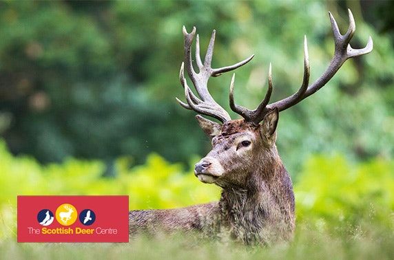 The Scottish Deer Centre tickets