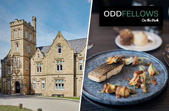 Oddfellows On the Park tasting menu & drinks