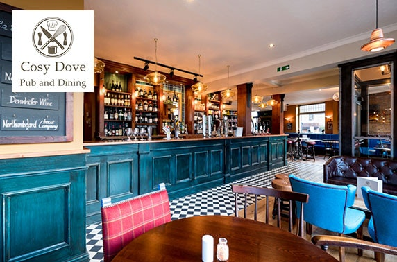 Burgers & drinks, The Cosy Dove