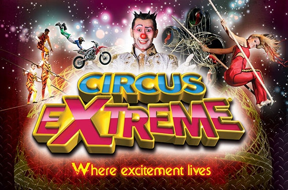 Circus Extreme at Town Moor