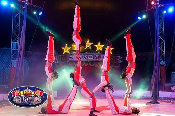 Zippo's Circus, choice of 5 locations