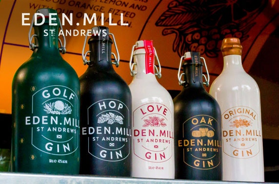 Eden Mill gin tasting, Princes Square