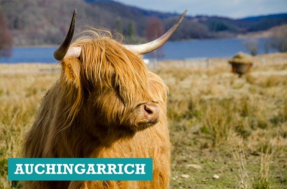 Auchingarrich Wildlife Park tickets - from £4pp