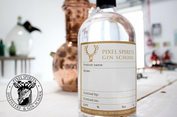 Pixel Spirits gin school experience