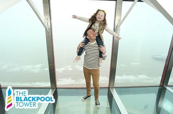 The Blackpool Tower Eye