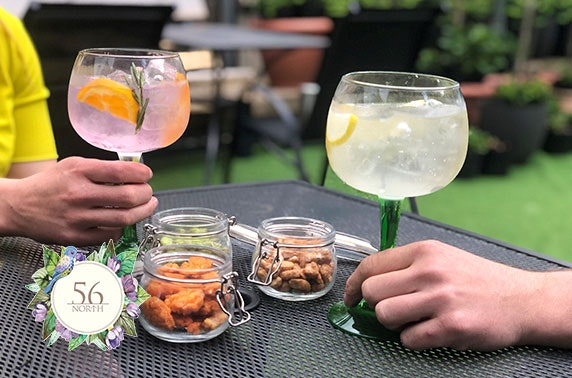 56 North's Scottish Gin Garden drinks & nibbles