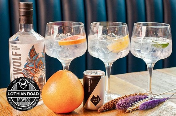 BrewDog Lothian Road gin flight & sharing platter