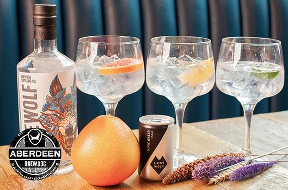 BrewDog Aberdeen Gallowgate gin flights & cheeseboard