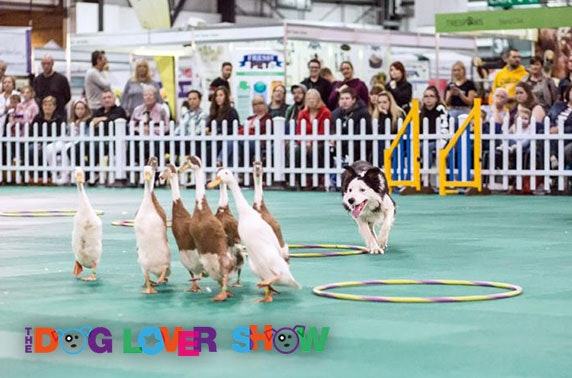 The Dog Lover Show, SEC