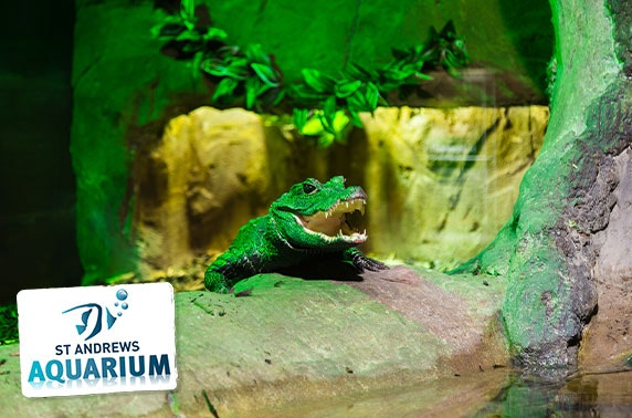 St Andrews Aquarium family day pass