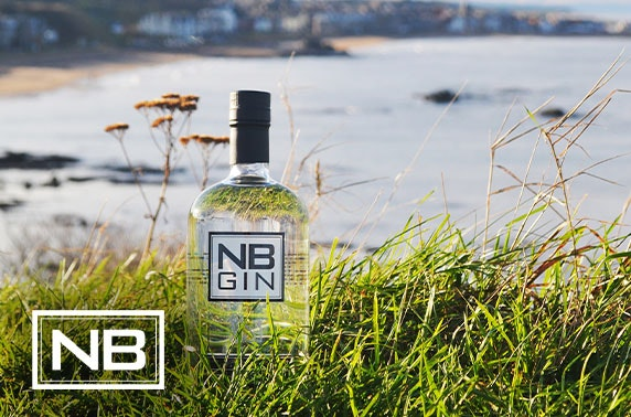 NB Gin distillery tour, tasting & bottle
