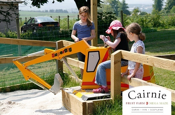 Cairnie Fruit Farm family ticket, Cupar