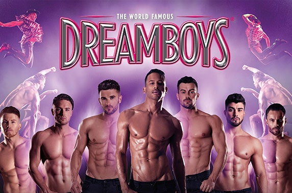 Cheeky night out with The Dreamboys