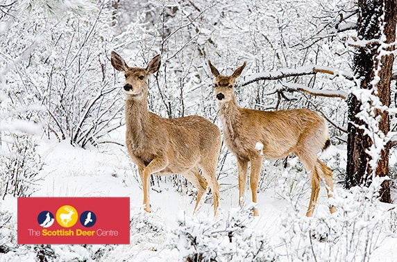 Scottish Deer Centre entry