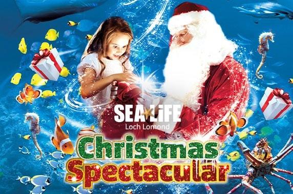 Santa at SEA LIFE Loch Lomond