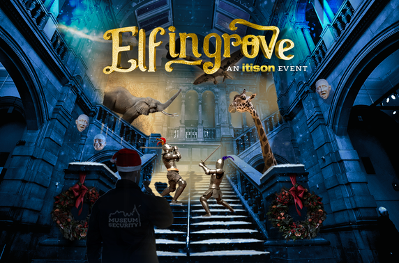 Exclusive presale: Elfingrove Silent Snow Disco