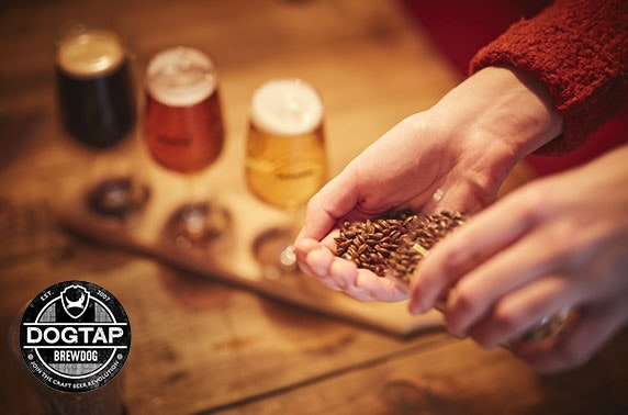 BrewDog Brewery tour - valid 7 days