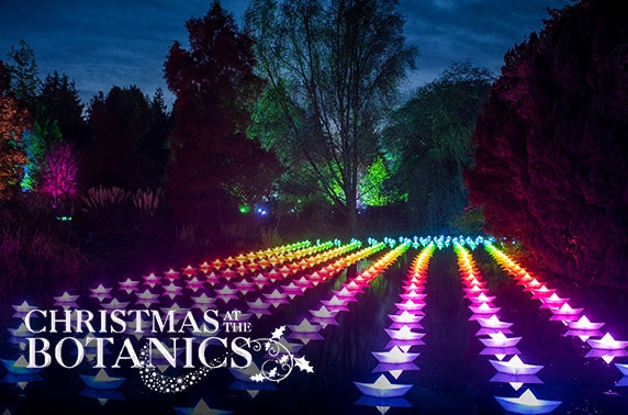 Christmas at the Royal Botanic Gardens
