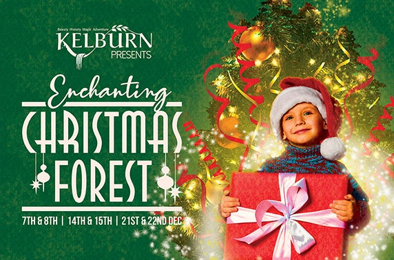 Kelburn's Christmas Forest at Kelburn Estate, nr Largs