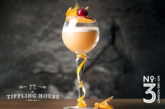 The Tippling House gin or whisky tasting