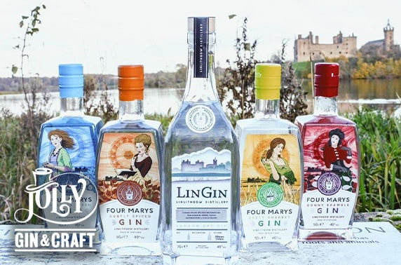 Gin tasting & dinner, Jolly Gin & Craft