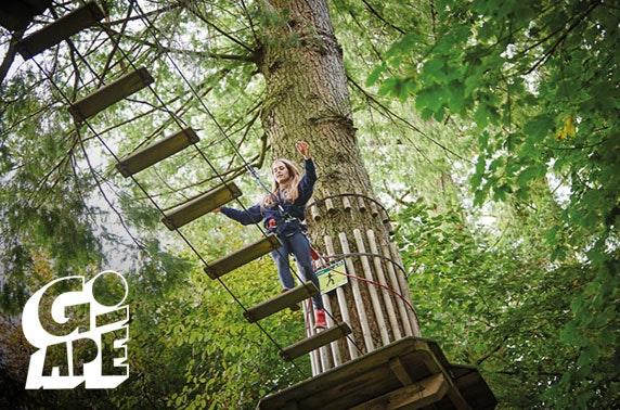 Go Ape Aberdeen Treetop Challenge