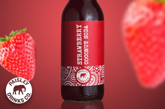 12 bottles of Dreamy Strawberry Coconut Soda from Paisley Drinks Co