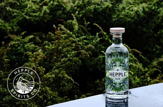 Award-winning Hepple Spirits; 70cl High Fidelity Gin, 4 bottles of Fever Tree Tonic & Douglas Fir sherbet garnish (plus £5 P&P)