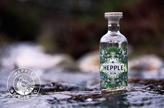 Award-winning Hepple Spirits; 70cl High Fidelity Gin & 4 bottles of Fever Tree Tonic (plus £5 P&P)