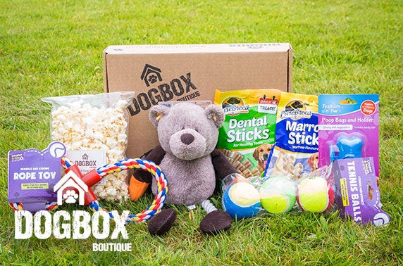 7 item gift box from DogBox Boutique