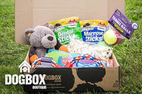 8 item gift box from DogBox Boutique