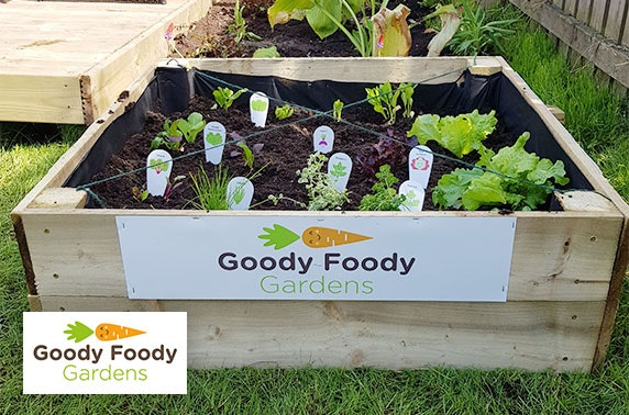 Goody Foody Gardens herb and salad bed includes delivery & installation