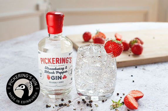 Brand new flavoured gin and sanitiser pack from Pickering's Gin