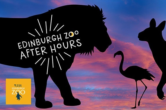 Edinburgh Zoo After Hours - adults only!