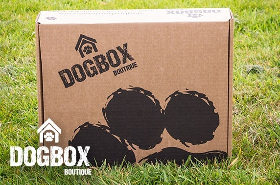 5 item gift box from DogBox Boutique