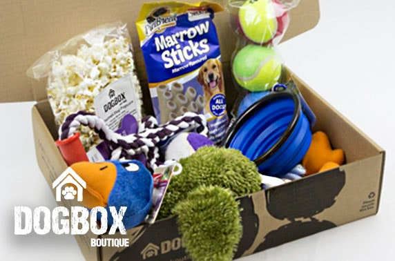 6 item gift box from DogBox Boutique