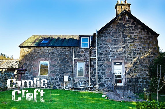 The Farmhouse at Comrie Croft self-catering break