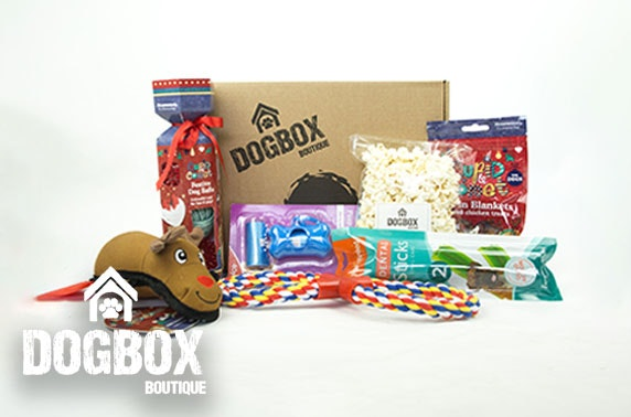 7 item Christmas gift box from DogBox Boutique