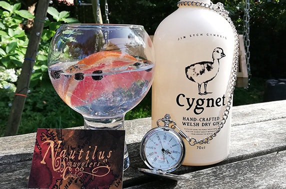 Gin subscription - £29