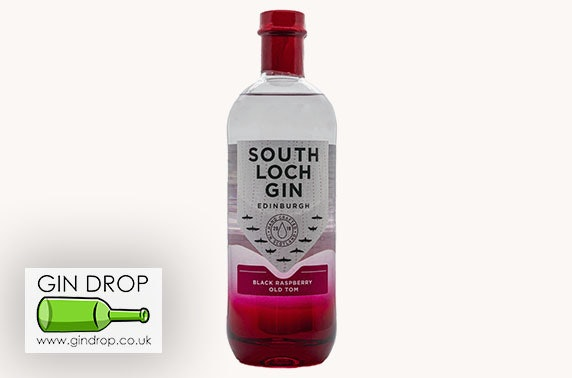 South Loch Gin & FeverTree tonic, delivered