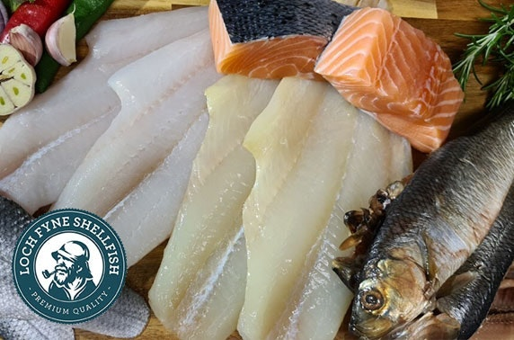 Fish & shellfish box delivered from Loch Fyne Shellfish; tuck into a range of haddock, langoustines, mussels and more!