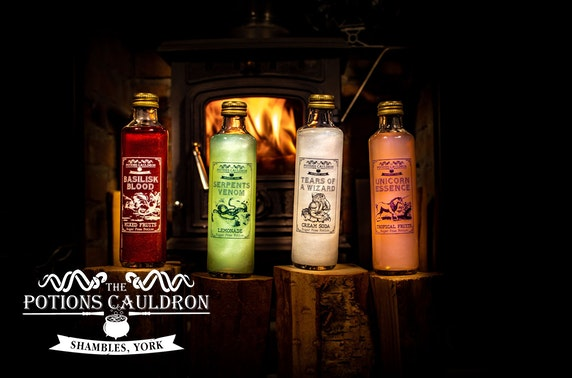 The Potions Cauldron gift sets